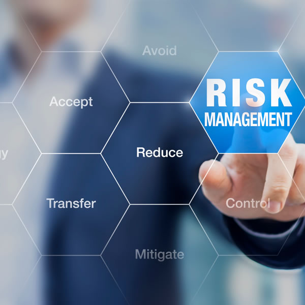 Corso Enterprice Risk Management Cover